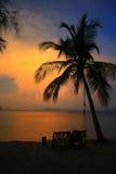 Zonsondergang op het strand stock foto's