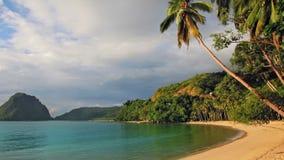 Zonsondergang op het strand met palmenlijn stock footage