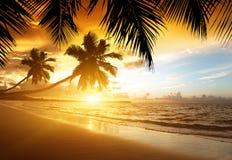 Zonsondergang op het strand van overzees Royalty-vrije Stock Fotografie