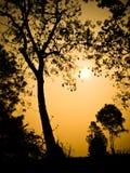 Zonsondergang op heuvel Royalty-vrije Stock Foto's