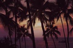 Zonsondergang op Kona-Baai, Groot Eiland Hawaï Stock Fotografie