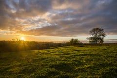 Zonsondergang op landbouwbedrijfgebieden met boom en mooie bewolkte hemel, Cornwall, het UK Royalty-vrije Stock Foto