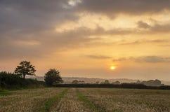 Zonsondergang op landbouwbedrijfgebieden met mooie bewolkte hemel, Cornwall, het UK royalty-vrije stock fotografie