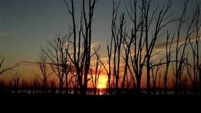 Zonsondergang op meer stock video