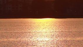 Zonsondergang op meeroppervlakte stock videobeelden