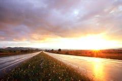 Zonsondergang op natte weg Stock Afbeeldingen