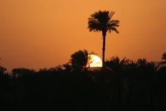 Zonsondergang op Nijl, Egypte Stock Afbeelding