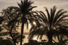 Zonsondergang op Nile River Stock Foto