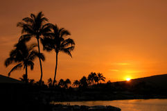 Zonsondergang op Oahu Royalty-vrije Stock Foto
