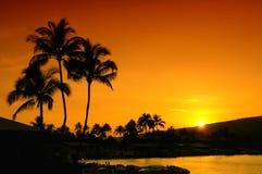 Zonsondergang op Oahu Stock Foto's