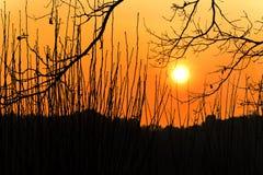 Zonsondergang op rand van heuvel Royalty-vrije Stock Afbeeldingen