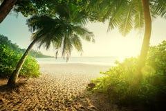 Zonsondergang op Seychellen royalty-vrije stock foto's