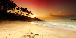 Zonsondergang op Sri Lanka Royalty-vrije Stock Fotografie