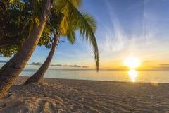 Zonsondergang op strand Royalty-vrije Stock Afbeelding