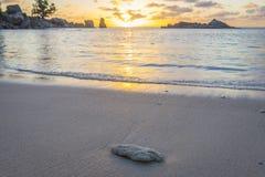 Zonsondergang op Tenger Anse-strand, Seychellen stock fotografie