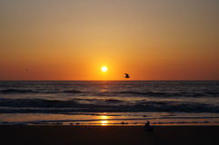Zonsondergang op Texel Royalty-vrije Stock Foto