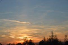 Zonsondergang op weide tussen bos royalty-vrije stock foto