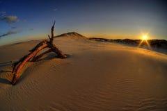Zonsondergang op zandduinen stock fotografie