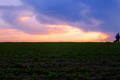 Zonsondergang over Afrikaans landbouwbedrijf na onweer Royalty-vrije Stock Fotografie