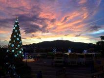 Zonsondergang over berg en de Kerstmisboom op een tropisch eiland Royalty-vrije Stock Foto