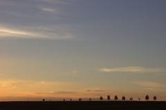 Zonsondergang over bomen Stock Afbeelding