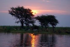 Zonsondergang over de Chobe-Rivier met mensen die op de bank kamperen Stock Afbeelding