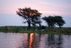 Zonsondergang over de Chobe-Rivier met mensen die op de bank kamperen Stock Foto's