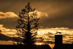 Zonsondergang over de daken Stock Foto's