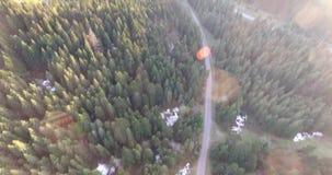 Zonsondergang over de de lente bos Luchtmening stock footage