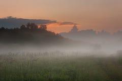 Zonsondergang over de weide met mist Royalty-vrije Stock Foto