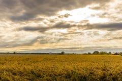 Zonsondergang over een Gebied van Dromen Stock Foto's