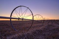 Zonsondergang over een landbouwbedrijfgebied. Royalty-vrije Stock Afbeeldingen