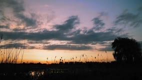Zonsondergang over een moeras of een meer bij de weg stock video