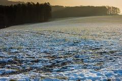 Zonsondergang over een sneeuwweide royalty-vrije stock fotografie