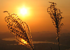 Zonsondergang over Han River, Seoel, Zuid-Korea Stock Foto