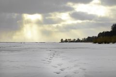 Zonsondergang over het bevroren meer of de rivier, bosvoetstappen, voetafdruksporen op de sneeuw royalty-vrije stock fotografie