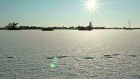 Zonsondergang over het Bevroren Meer Schone en ijzige dag Vlot dolly schot stock footage