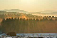 Zonsondergang over het bos Stock Foto's