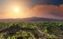 Zonsondergang over het dorp Royalty-vrije Stock Afbeeldingen