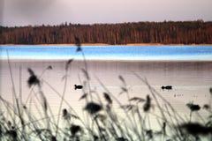 Zonsondergang over het meer Royalty-vrije Stock Fotografie