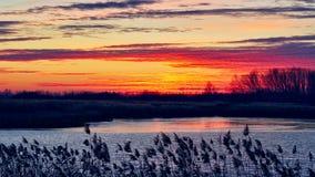 Zonsondergang over het meer en het bos, video de tijdtijdspanne van 4K stock videobeelden