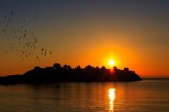 Zonsondergang over het overzees, het eiland en de vogels royalty-vrije stock fotografie