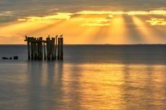 Zonsondergang over het overzees in sammer Stock Foto