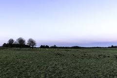 Zonsondergang over het Tatton-Park met kudde van herten op achtergrond - Tatton-het Park tuiniert Stock Afbeeldingen