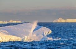 Zonsondergang over het Weddell-Overzees royalty-vrije stock afbeeldingen