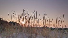 Zonsondergang over het zandige strand stock videobeelden