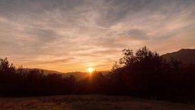 Zonsondergang over kleurrijk de herfstbos stock videobeelden