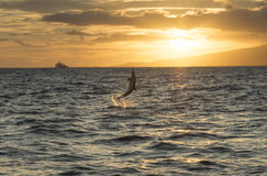 Zonsondergang over Maui royalty-vrije stock foto's