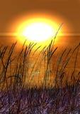 Zonsondergang over overzees Royalty-vrije Stock Afbeelding