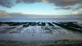 Zonsondergang over oysterfarm in Cancale Frankrijk stock foto